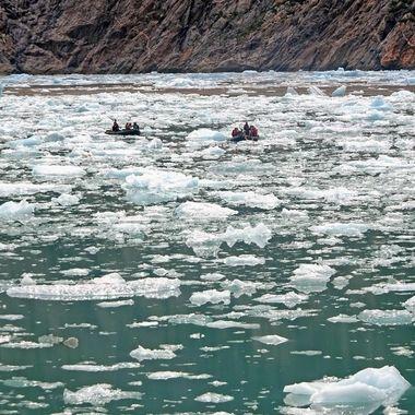 Tracy Arm Fjord (2), Alaska