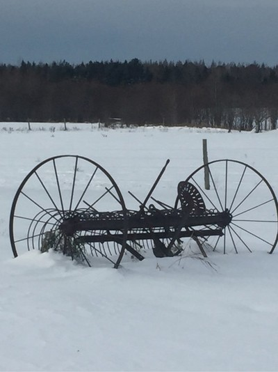 Vintage hay rack Can you imagine years ago sitting on that old steel seat for hours as your horse hold you long to rake the field