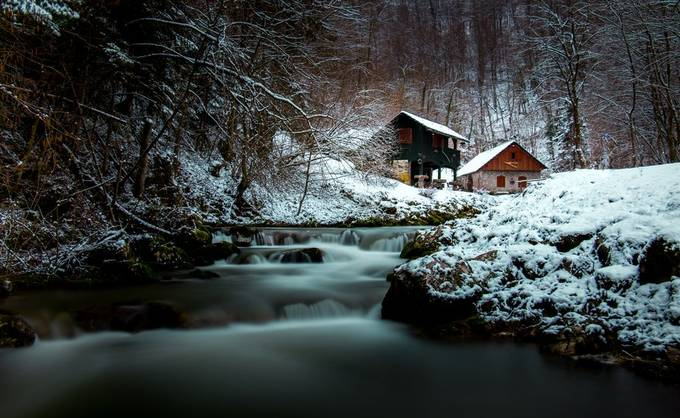 A hidden gem in the forest by GasperRozanc - Isolated Cabins Photo Contest