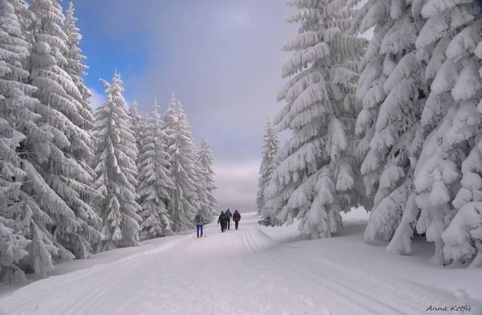 Winter Path by annakotfis - Winter Roads Photo Contest