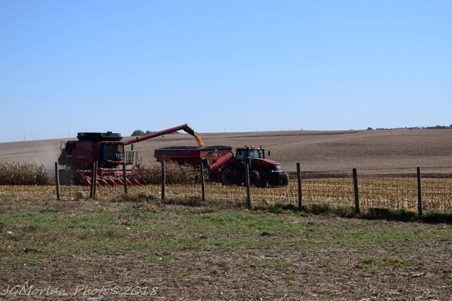 Harvesting the last field