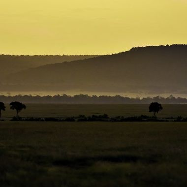 Across the Plains of Africa