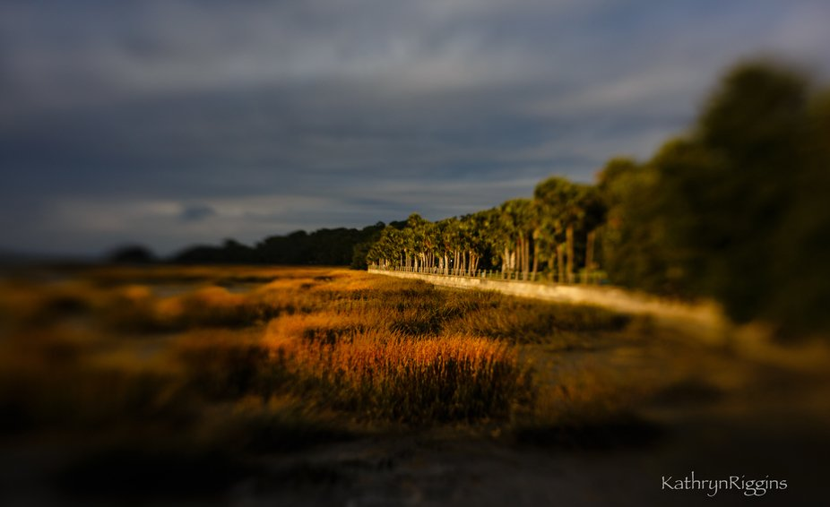 Golden hour sun hits the sea wall at Jekyll Island, Ga.  Low tide and the marsh shows off its fal...