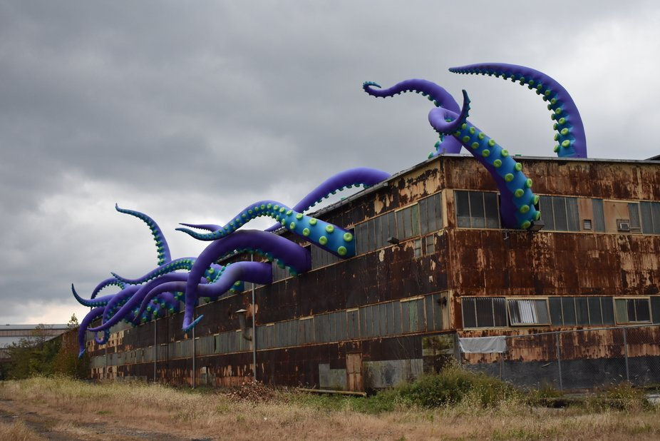 Sea Monsters Art Installation
