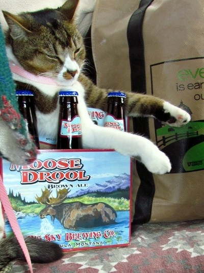 Cleo and Moose Drool ale