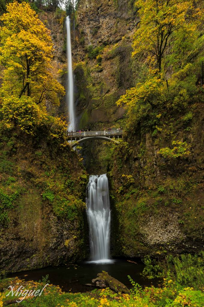 Fall colors at one of Oregon's most iconic sites