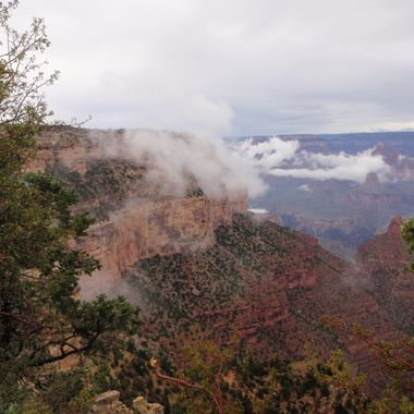 At the Grand Canyon after a downpour of rain