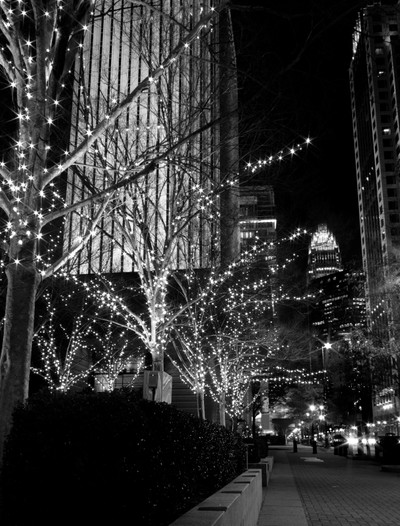Black And White City Holiday Lights