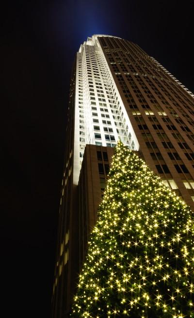 Charlotte Christmas Tree