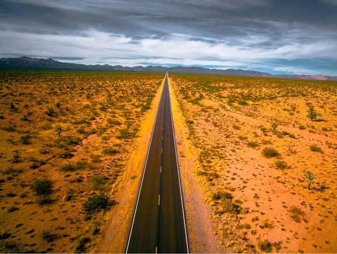 Into Joshua Tree by KEnagonio - Straight Roads Photo Contest