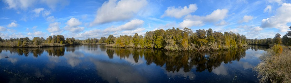 A panorama of Lettuce Lake in Tampa Florida.