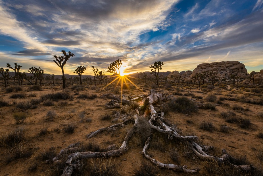 The silence is always so peaceful during sunset in the desert.