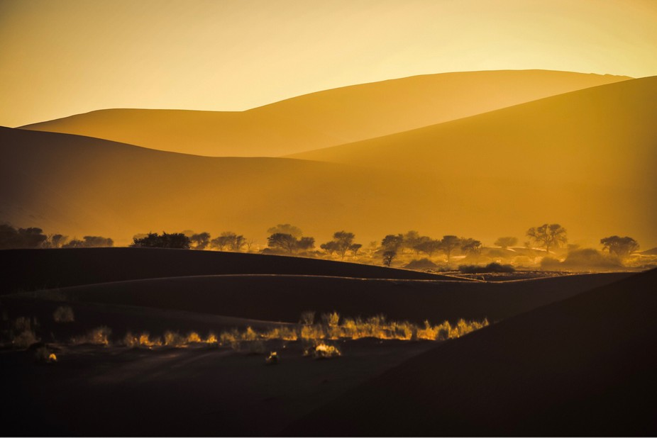 Sunrise in the Namib Desert