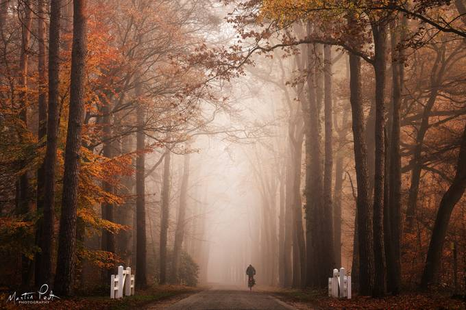 It's only light by martinpodt - Straight Roads Photo Contest