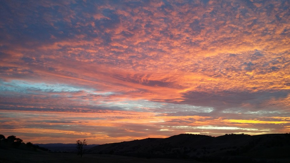 Was taken in Paso Robles CA