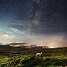 Starry night over Donegal - Ireland and a curious guest lit by the moon.