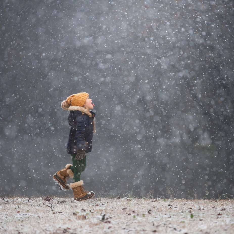 Catching Snowflakes by nicolekost - We Love The Winter Photo Contest