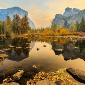 Novermber morning in Yosemite valley. Fallen leaves floating the still waters of river Merced. Waters without water. And slight smoke in the air ...