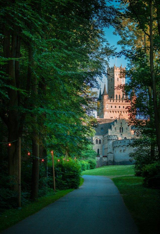Road to mystery by elenaivlieva - Tall Trees Photo Contest