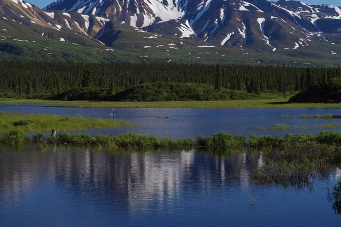 2015 Alaska cruise, out with pro photographer on photo hunt