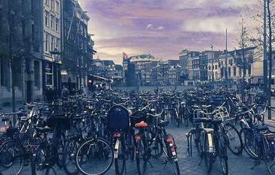 Bike jungle