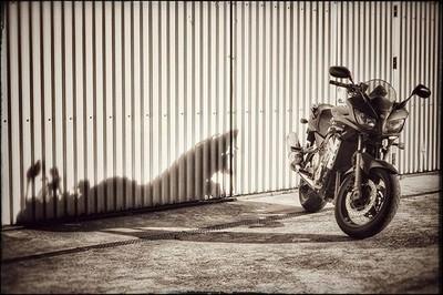 #Yamaha #fz1000s #fazer basking in the #glorious #morning #sunlight #motorcy