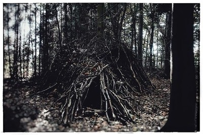 Wood you enter?#enteratyourownperil #dare #darkness #woods #twigs #branches