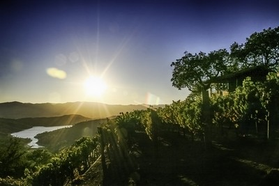 Sunset In Napa County CA