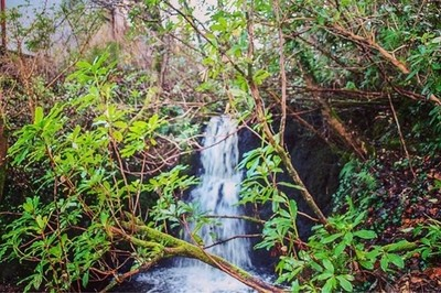 Life has a funny way of working out just when you start to think it never will. #abmlifeiscolorful #agameoftones #theeverygirl #nature_good #theeverydayproject #waterfall #waterfalls #chasingwaterfalls #nationalpark #connemara #wildatlanticway #thegreatou