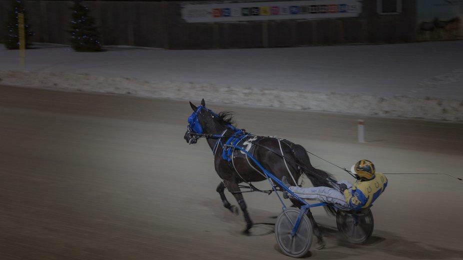 LDL Gem, horse 5 race 6 warm up at Western Fair Grounds, London, Ontario, Canada. December 11, 2018