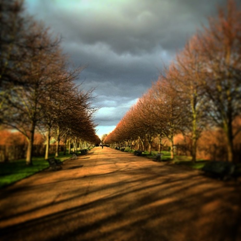 #thingsseeninlondon #hydeparkstroll by shannonquilty - Straight Roads Photo Contest