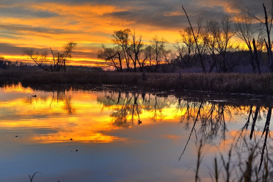 The golden rays of the setting sun on the lake.
