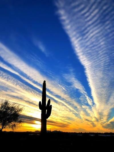 After the sunrise!  Arizona
