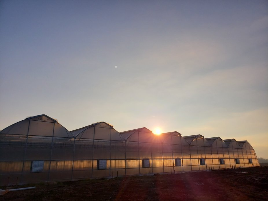 Sunrise early morning on the new greenhouse