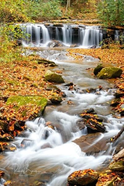 Pearson Falls North Carolina