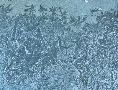 IMG_20181216_225211BLUE FROST