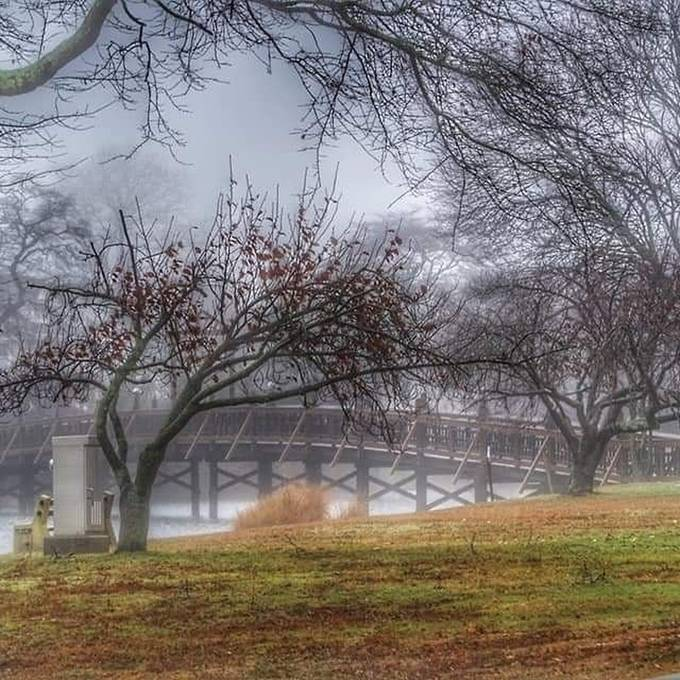 trying something new, a grey, hazy fall day in the park