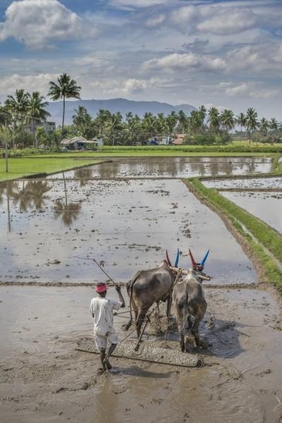 village tamil nadu