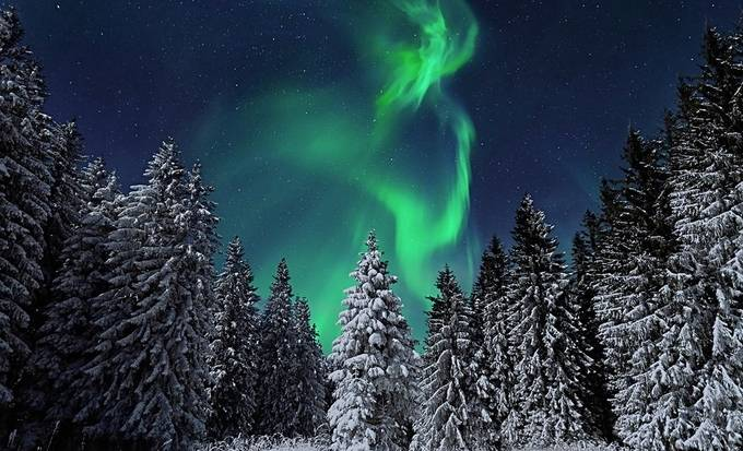Alaskan Aurora by NorthernExposures - Alaska The Wild Photo Contest