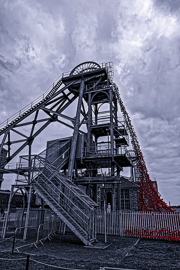 In November 2014 the Tower of London moat was filled with poppies, Following this  pasrts of the display went on tour around the Uk one such place was Woodhorn mining museum