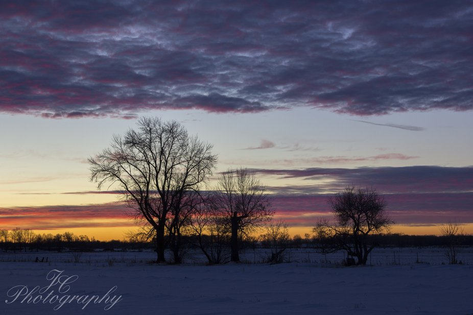 Sunset tree line in Haleys Station Ontario   canon
