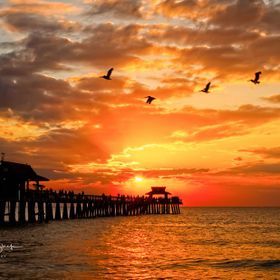 Visitors and natives alike make their way to the Naples Pier most evenings to take in the sunset.  Quite the gathering.