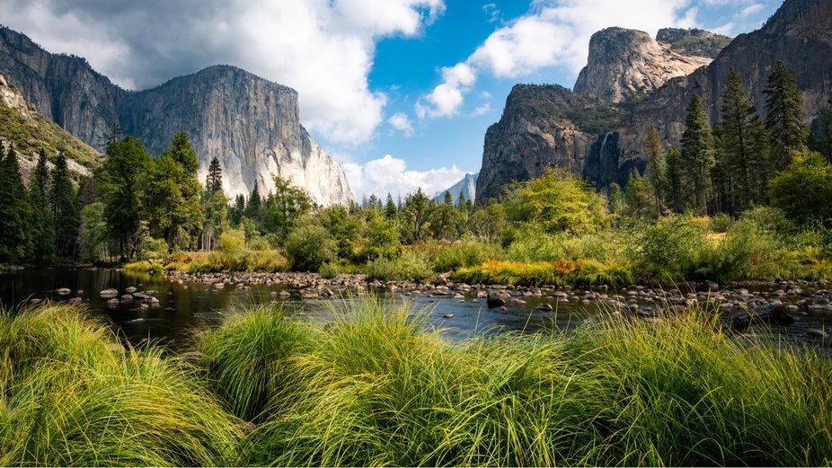 Yosemite Views