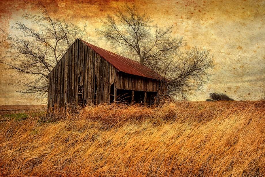 A tumble down barn in Itasca, Texas.