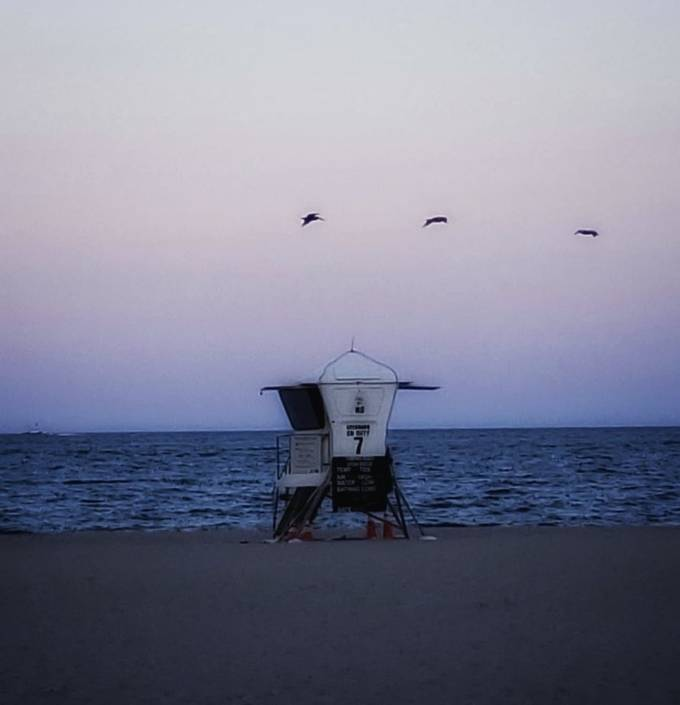 Sunset at Pompano Beach with pelicans taking flight
