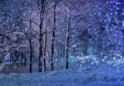 Winter tale in the city