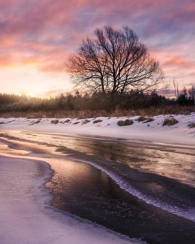 Thin Ice on Bear Brook