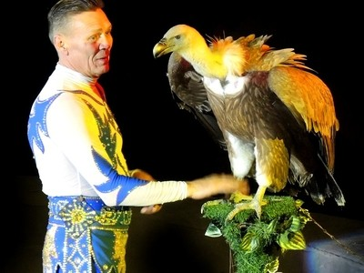 """Let's be friends.""  The Vulture and the Trainer. Circus, St. Petersburg."