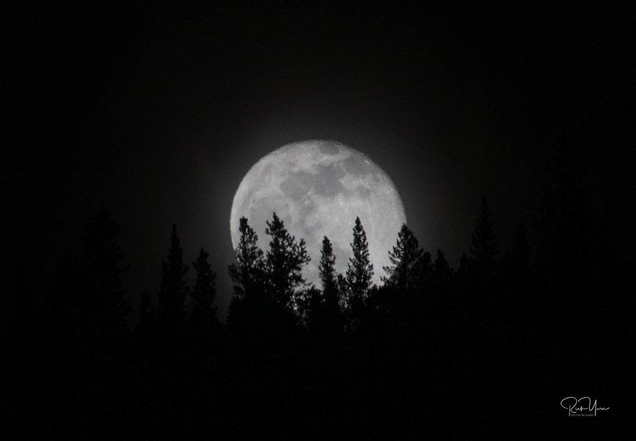 Moon at Chicago Creek_7502