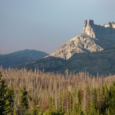 """This photo taken in the summer of 2013 is of a mountain peak in northwest Wyoming dubbed """"Sleeping Man.""""  The red glow in the sky if from a forest fire to the north, while the foreground shows the devastation done to trees due to pine beetle infestation."""